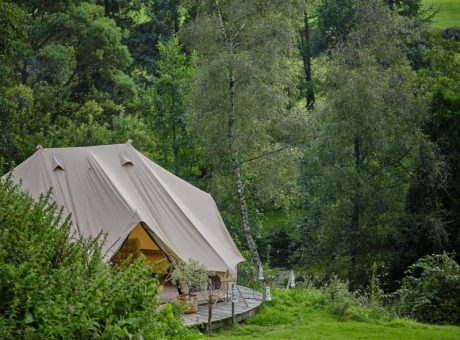 A light brown clamping tent amongst trees and positioned on a green field